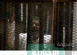 جنايات القاهرة تستأنف محاكمة  محمد مرسى وقيادات الإخوان في قضية اقتحام السجون