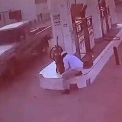 فنانة لبنانية: «حديث الكلب نجس مخالف للقرآن» ومفتي مصر يحسم الجدل