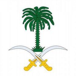"""إدارة مدينة الملك عبدالله الرياضية في جدة.. ملعب """"الجوهرة المشعة"""" يخضع لعمليات معالجة"""