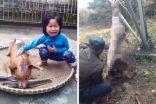 طفلةتجد كلبها مذبوح ومعروض للبيع !!