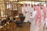 #الأحساء : الحسيني يزور مصنع الريان للألبان مع عدد من مسئولي مديرية #الزراعة